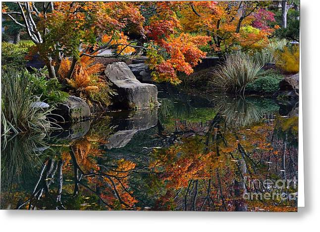 Pond In Autumn Greeting Card by Lisa L Silva