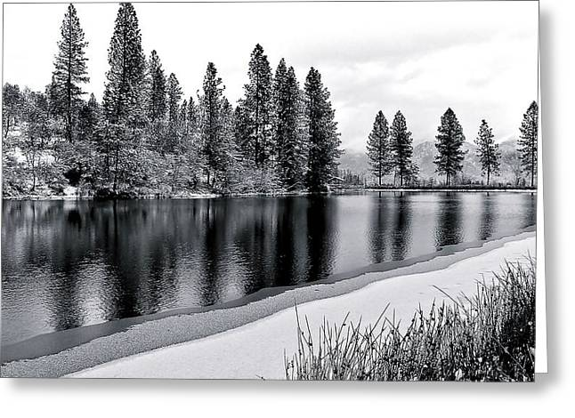 Greeting Card featuring the photograph Pond In Snow by Julia Hassett
