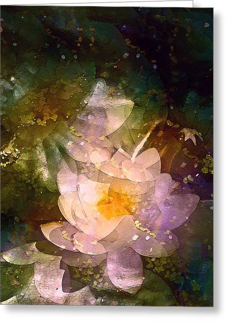 Pond Lily 23 Greeting Card by Pamela Cooper