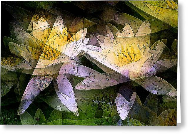 Pond Lily 24 Greeting Card by Pamela Cooper