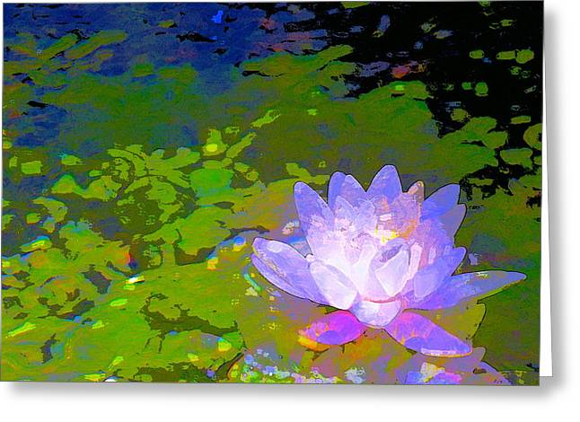 Pond Lily 29 Greeting Card by Pamela Cooper