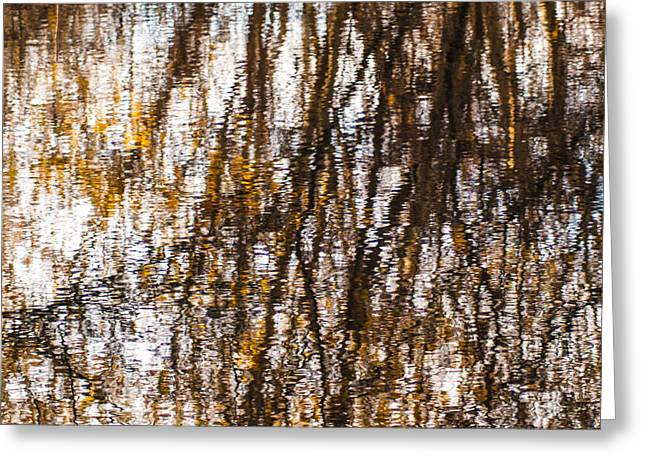 Pond Reflections #6 Greeting Card