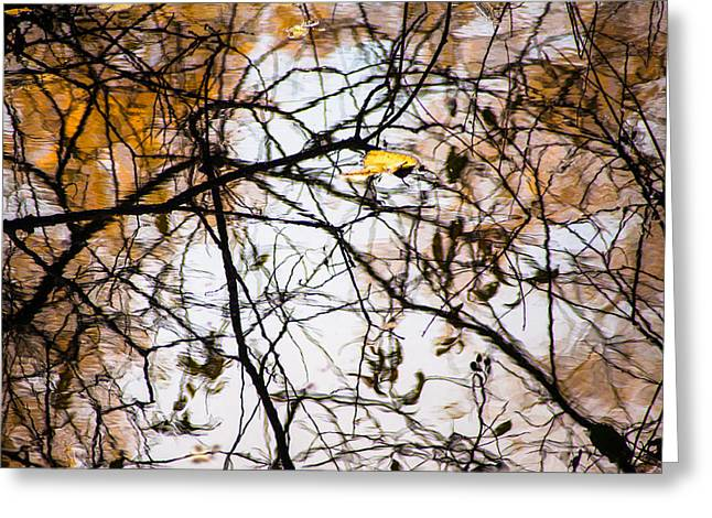 Pond Reflections #7 Greeting Card