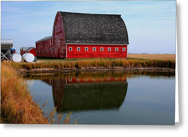 Greeting Card featuring the photograph Pond Reflections by Larry Trupp