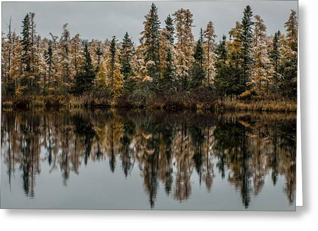 Pond Reflections Greeting Card by Paul Freidlund