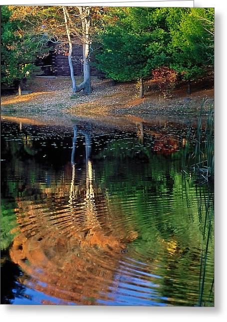 Pond Reflections Greeting Card by William McEvoy