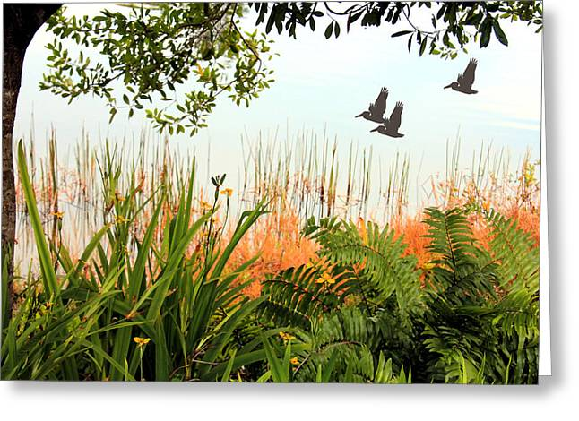 Pond View Greeting Card by Rosalie Scanlon
