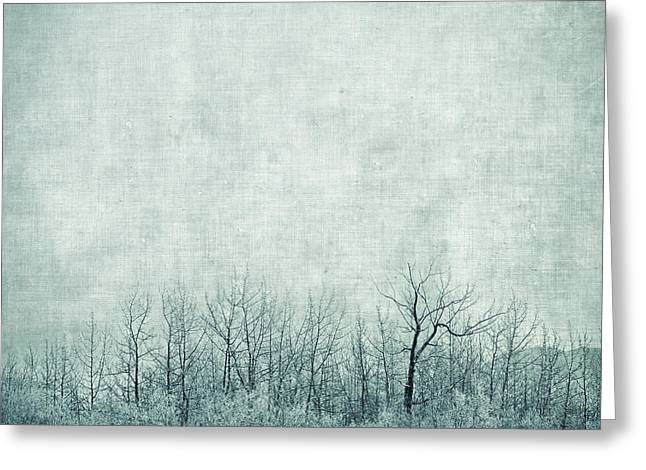 Pondering Silence Greeting Card by Priska Wettstein