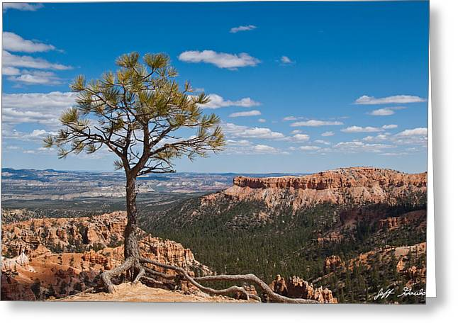 Greeting Card featuring the photograph Ponderosa Pine Tree Clinging To Life On Canyon Rim by Jeff Goulden