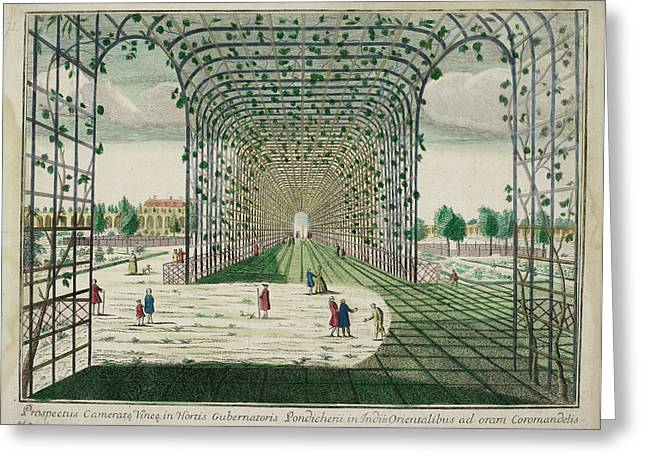 Pondicherry: Governor's Garden Trellis Ar Greeting Card by British Library