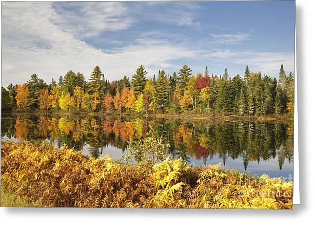 Pontook Reservoir - Dummer New Hampshire Greeting Card by Erin Paul Donovan