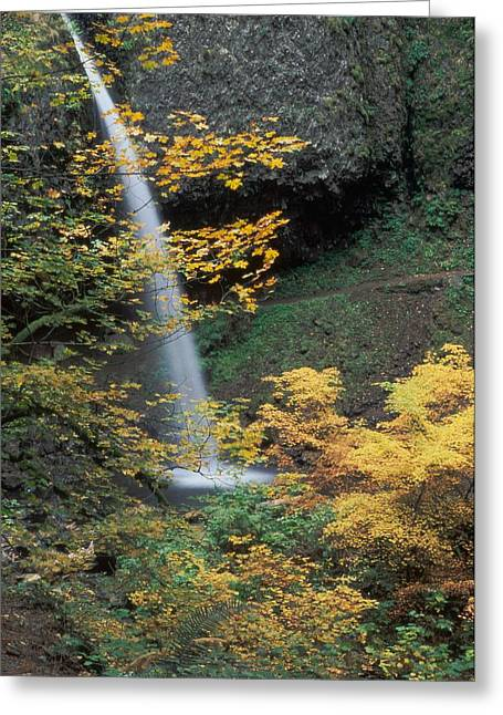 Ponytail Falls Greeting Card