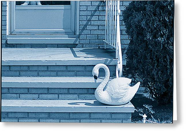 Poodle And Swan Greeting Card