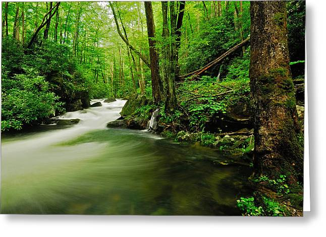 Pool In Little River Greeting Card by Stefan Carpenter