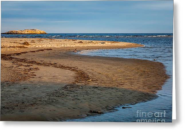 Popham Beach Curve Greeting Card by Susan Cole Kelly