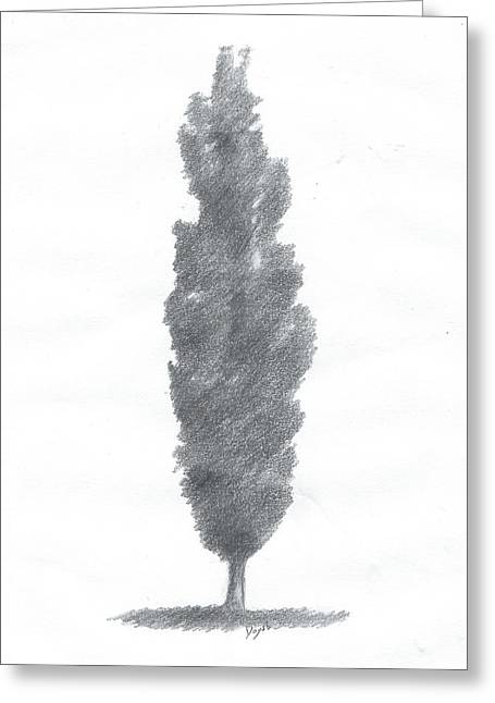 Poplar Drawing Number One Greeting Card by Alan Daysh