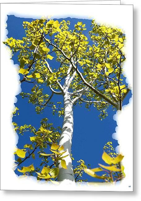 Poplar Tree In Spring  Greeting Card by Will Borden
