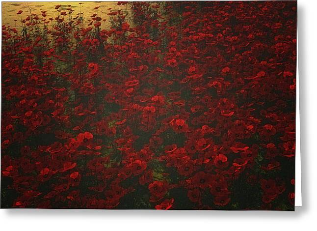 Poppies In The Rain Greeting Card