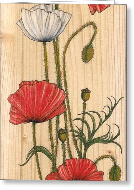 Poppies On Wood Greeting Card by Snezana Kragulj