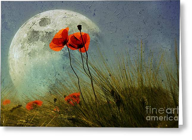 Poppy In The Moon Greeting Card by manhART