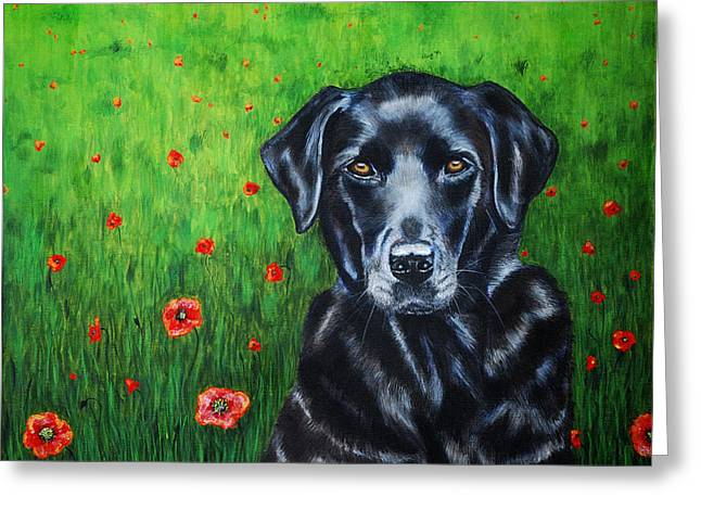 Poppy - Labrador Dog In Poppy Flower Field Greeting Card by Michelle Wrighton