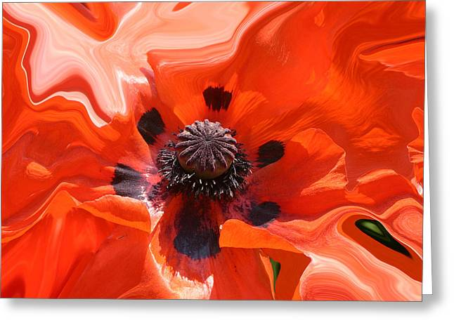 Poppy Nest Greeting Card