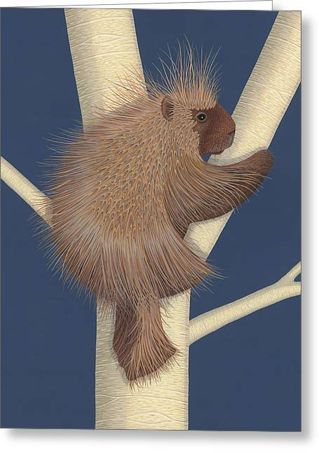 Porcupine Greeting Card by Nathan Marcy
