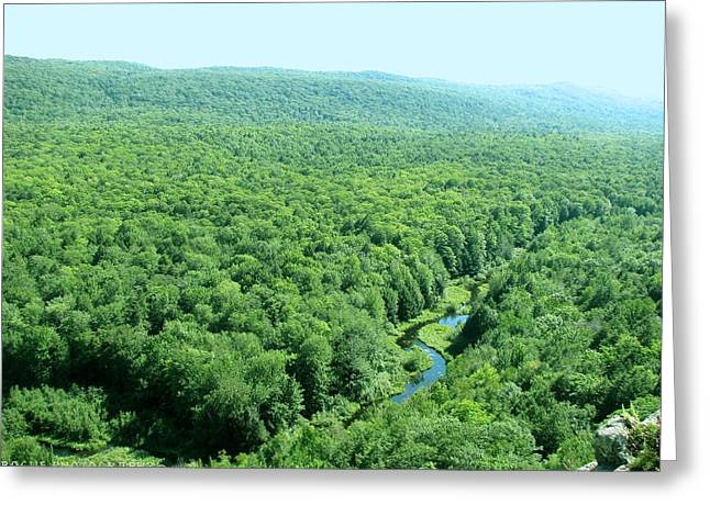 Porcupine River Greeting Card by Meghan Ziegel
