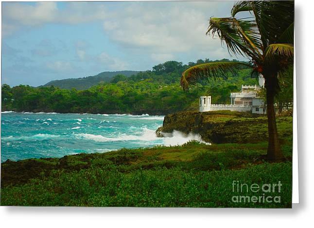 Port Antonio Greeting Card by Carey Chen