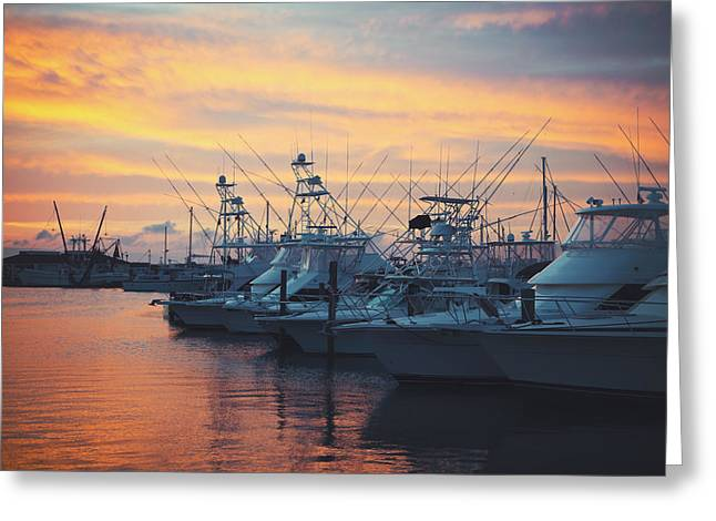 Port Aransas Marina Sunset Greeting Card by Ray Devlin