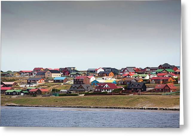 Port Stanley In The Falkland Islands Greeting Card by Ashley Cooper