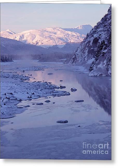 Portage Creek In Winter - Alaska  Greeting Card