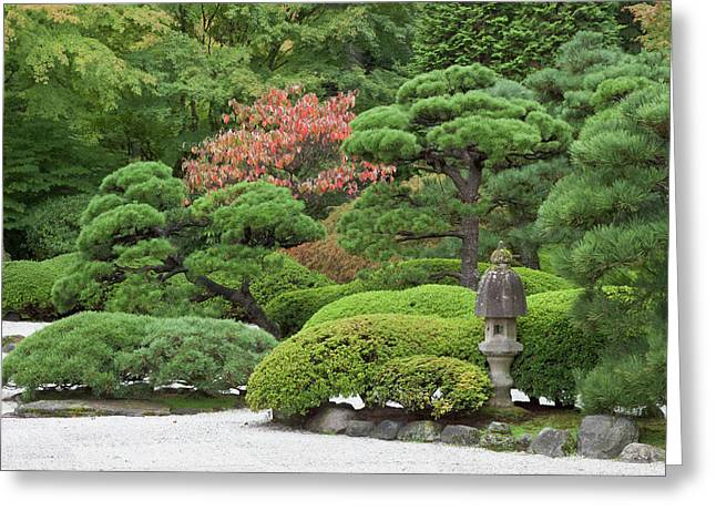 Portland Japanese Garden, Oregon Greeting Card by William Sutton