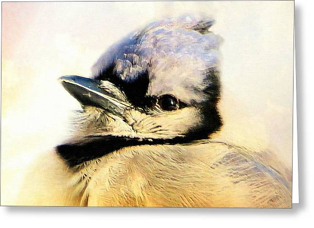 Portrait Of A Blue Jay Greeting Card