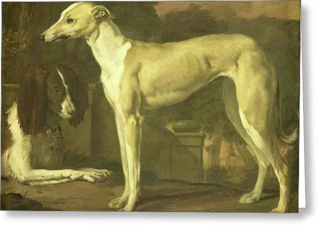 Portrait Of A Greyhound And Spaniel, Jan Weenix Greeting Card