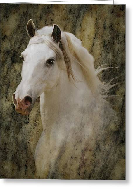 Portrait Of A Horse God Greeting Card