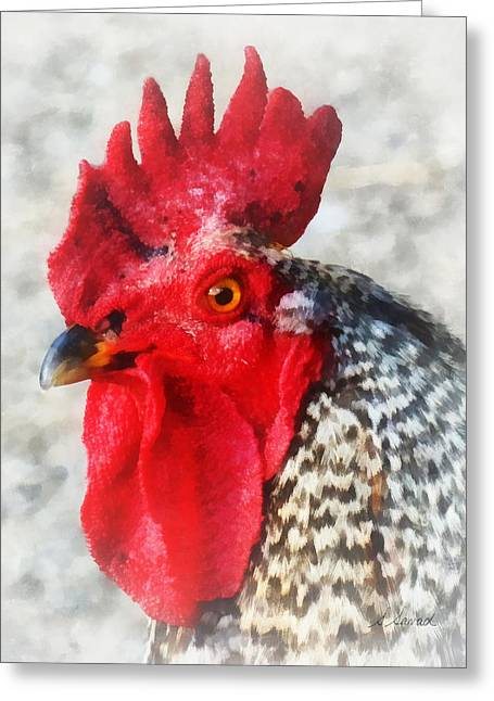 Portrait Of A Rooster Greeting Card by Susan Savad