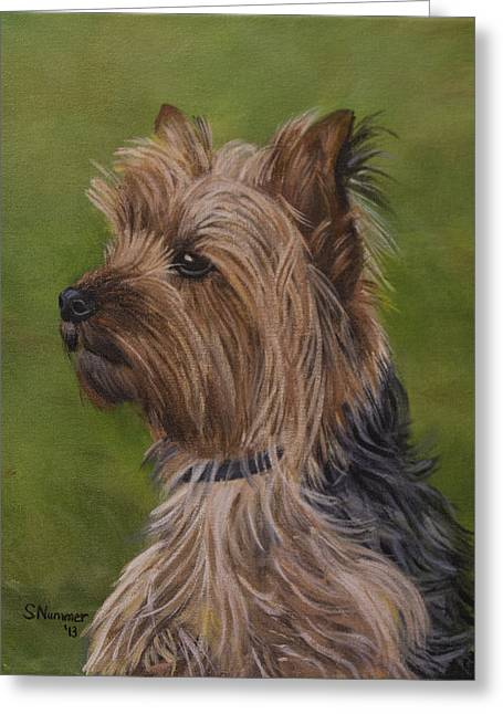 Portrait Of A Yorkie Greeting Card by Sharon Nummer