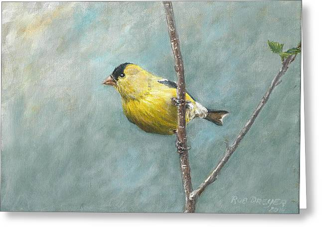 Portrait Of An American Goldfinch Greeting Card