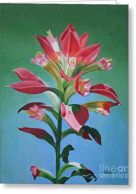 Greeting Card featuring the painting Portrait Of An Indian Paintbrush by Jimmie Bartlett
