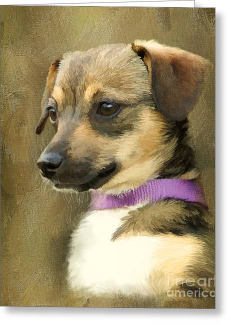 Portrait Of Maizie Greeting Card by Jayne Carney