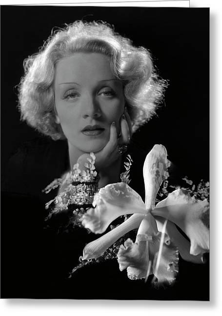 Portrait Of Marlene Dietrich Greeting Card by Artist Unknown