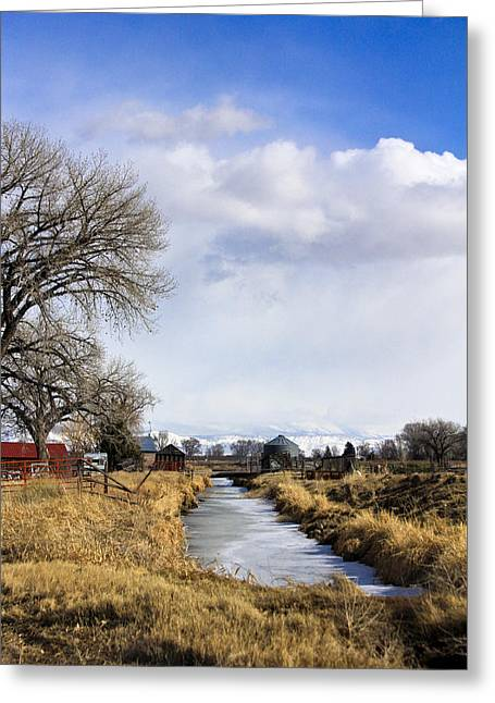 Portrait Of Rural Colorado Greeting Card by Marta Alfred