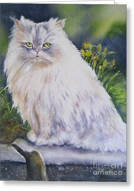 Portrait Of White Cat Greeting Card by Patricia Pushaw