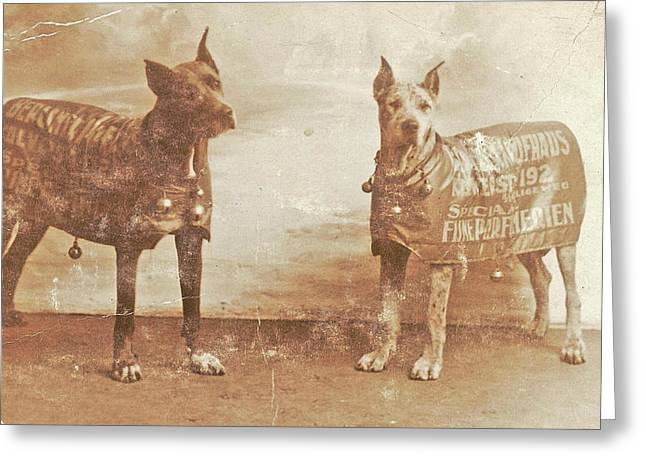 Portrait Two Dogs Toymaker With Advertising Copy Greeting Card by Artokoloro