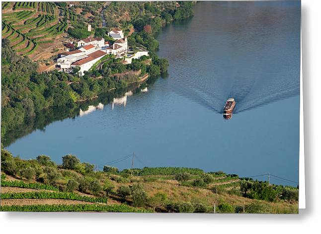 Portugal, Douro Valley, Douro River Greeting Card