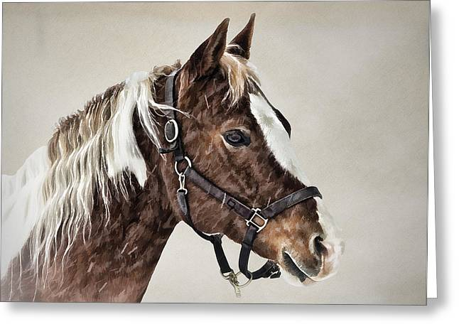Posed Greeting Card by Gary Smith