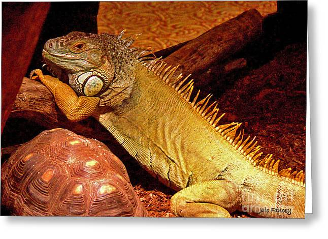 Posing Iguana And Friend Greeting Card