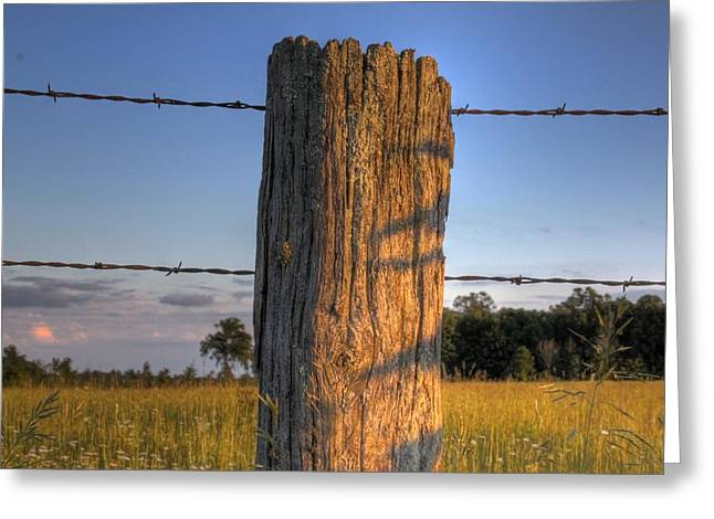 Post And Barb Wire Greeting Card