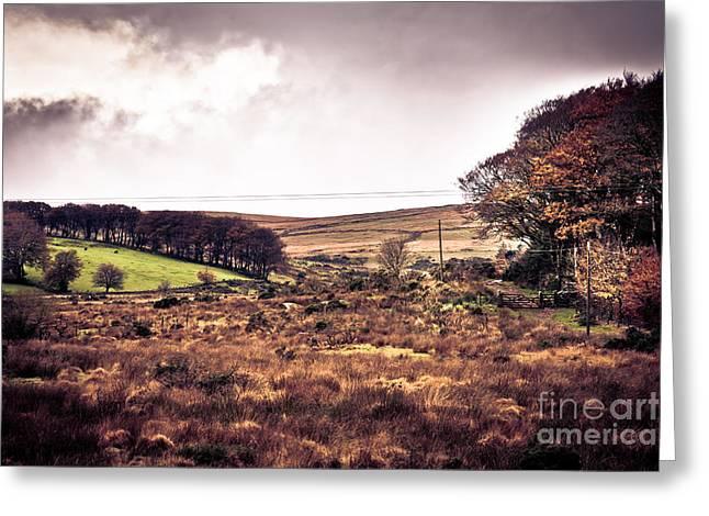 Postbridge On Dartmoor Greeting Card by Jan Bickerton